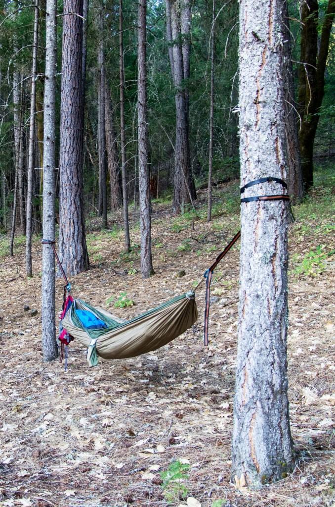 my secluded hammock spot