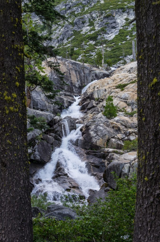 upper canyon creek falls, as seen through the trees