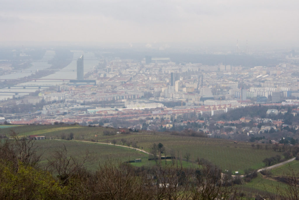 vienna city center from the base of the alps. too bad it was kinda overcast.